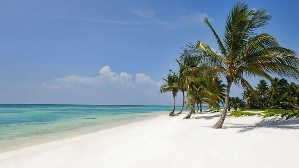 Caraibi – Granadine – in Catamarano
